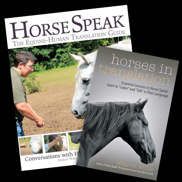 Bestsellers | horseandriderbooks