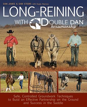 LongReining-lo2