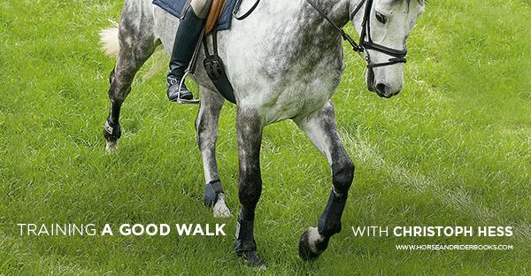 TrainingaGoodWalkweb-horseandriderbooks