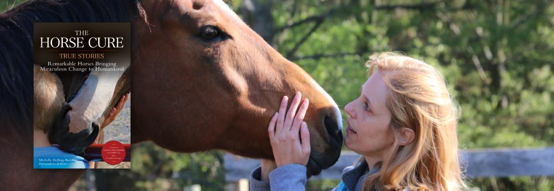 TrafSite_SliderHorseCure-horseandriderbooks