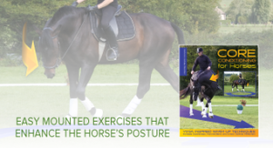 Core conditioning exercise for the horse