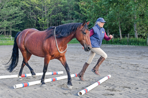 dressage horse and trainer Sandra Beaulieu Freestyle the book