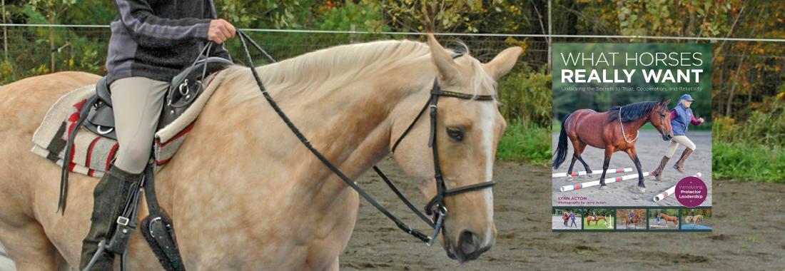 TrafSite_SliderWHRWMay20-horseandriderbooks