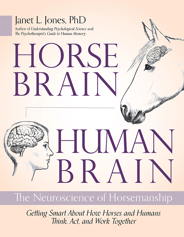 bisection person horse brain horse book