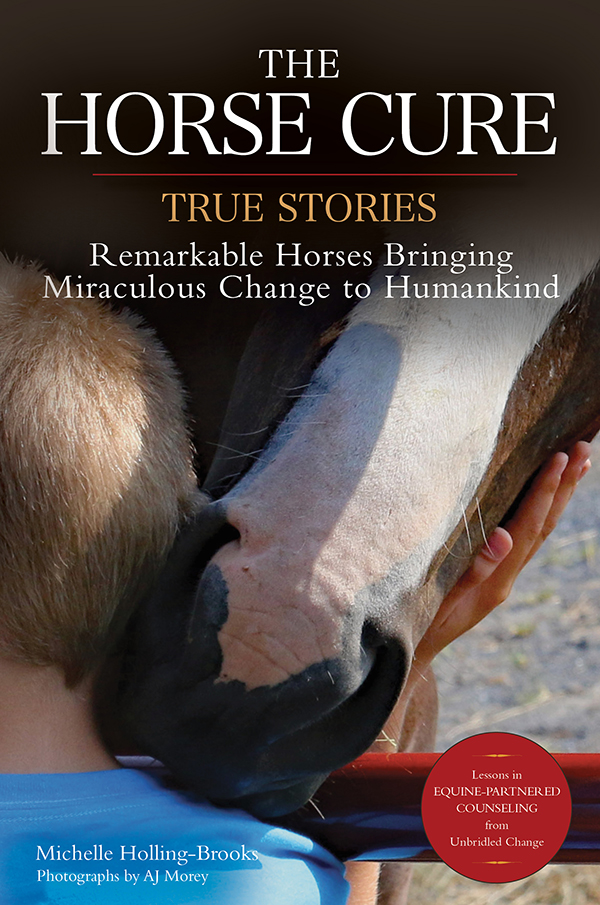 child and horse Horse Cure book