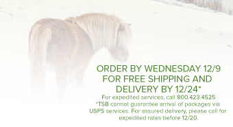 HOLIDAY SHIPPING INFO PONY IN SNOW